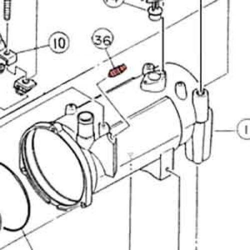 36) Plug-0